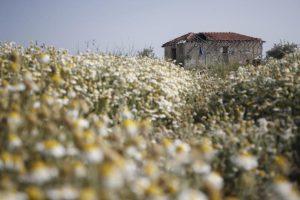 Προς βελτίωση το νομοθετικό πλαίσιο για τις ΜΕΕΠ, λέει η Ομοσπονδία Περιβαλλοντικών Οργανώσεων Κύπρου